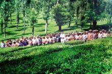 Nutrition Warriors | Prasanth Nair's Masterstroke That Arrested Hunger In A Wayanad Tea Estate