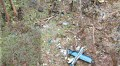 Tail wing: Debris from the helicopter lies scattered at at the crash site on Sept 3