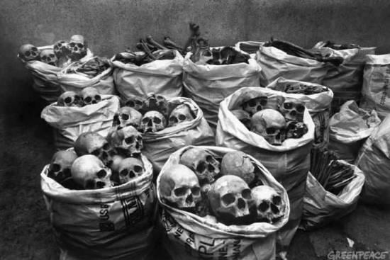Remembering Bhopal