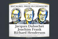 Nobel Prize In Chemistry: Jacques Dubochet, Joachim Frank, Richard Henderson Win Prestigious Award