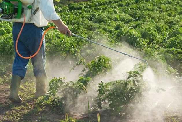 Maharashtra Orders Probe Into Death of 18 Farmers Due To Pesticide ...