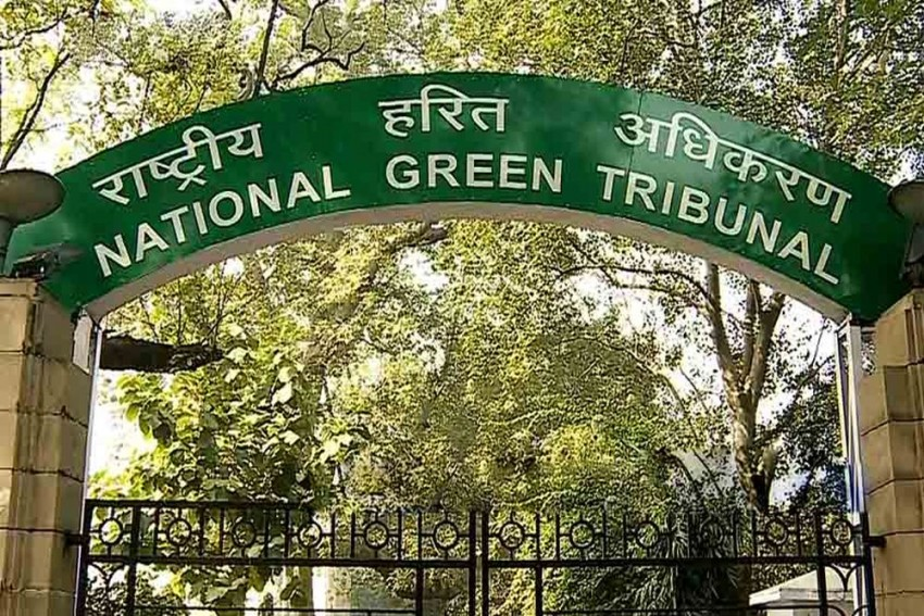 Delhi Govt Withdraws Review Petition After NGT Rejects Exemptions On Odd-Even Scheme
