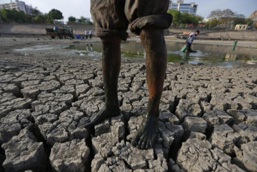 Telangana, Second In Farmer Suicides, To Send 1,000 Officials To Israel For 'Agro Skills Enchancement'