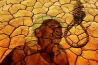 Maharashtra Reports 1,497 Farmer Suicides Since Loan Waiver Declared In June