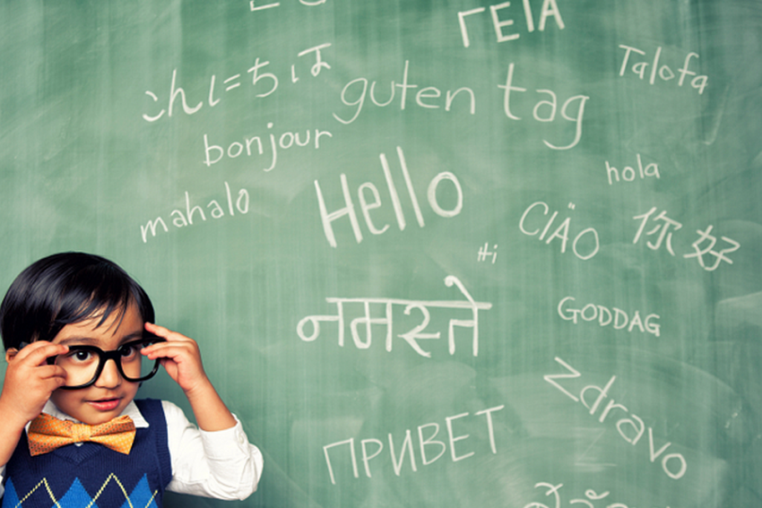 Skill Workforce In Mandarin, European Languages To Repeat India's Success In English Speaking World