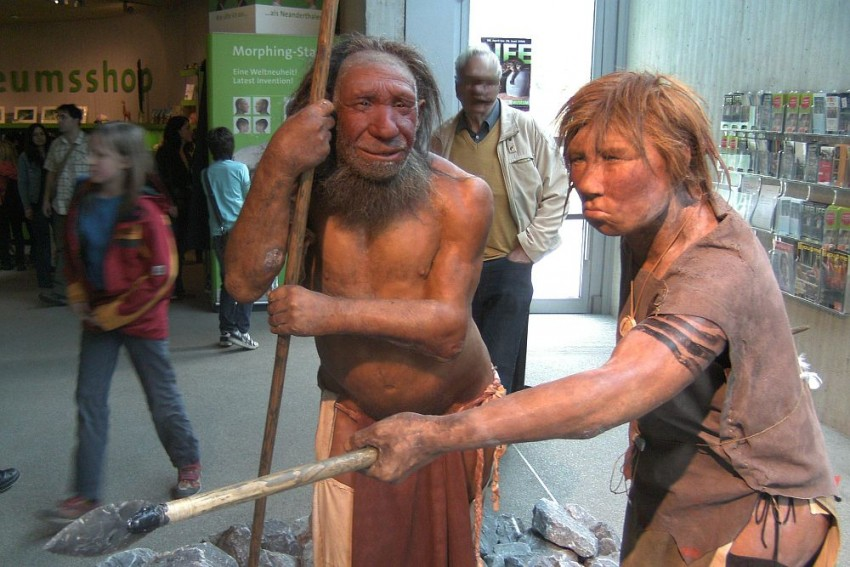 Neanderthal Genome Project Raises Surreal Question: What If We Can Resurrect Lost Human Cousins?