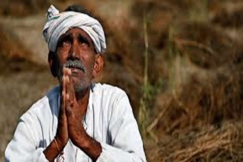 Scam-Hit Farmers Won't Have Problem Getting Loans: Government