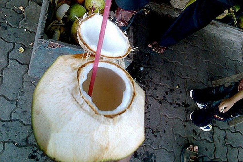New Technology Can Keep Coconut Water Fresh For Four Months