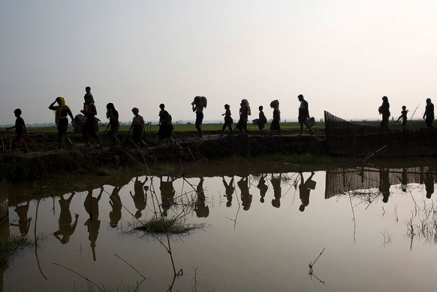 Rohingya In Myanmar Seemingly Face 'Ethnic Cleansing', Says UN Rights Chief