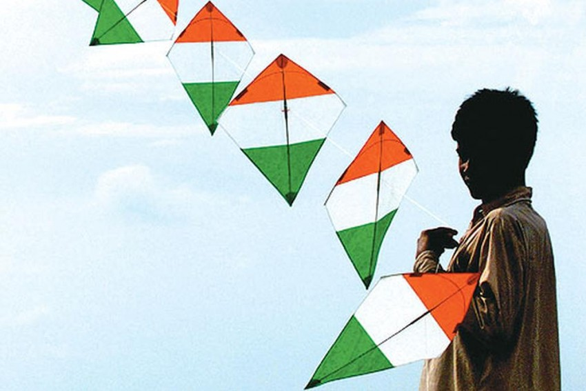 Makar Sankranti: 80 People, 1100 Birds Injured In Kite-Flying Related Accidents In Jaipur