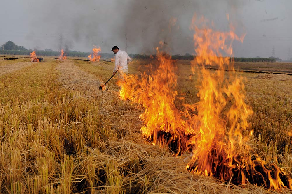 Putting An Abrupt Stop To Crop Burning Is An Impossible Aspiration