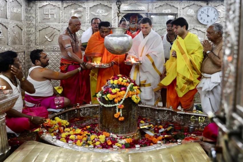 'What's Your <em>Gotra</em>, Type Of <em>Janeu</em> You Wear?' Sambit Patra Asks Rahul Gandhi