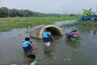 Watch: Kids Cross River Using Banana Stems To Reach School In Assam