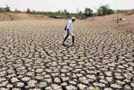 Nine Districts Of Odisha Declared Drought-Hit