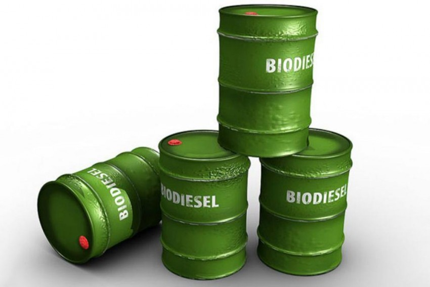 Biodiesel Can Be Used As Transportation Fuel: Bombay High Court