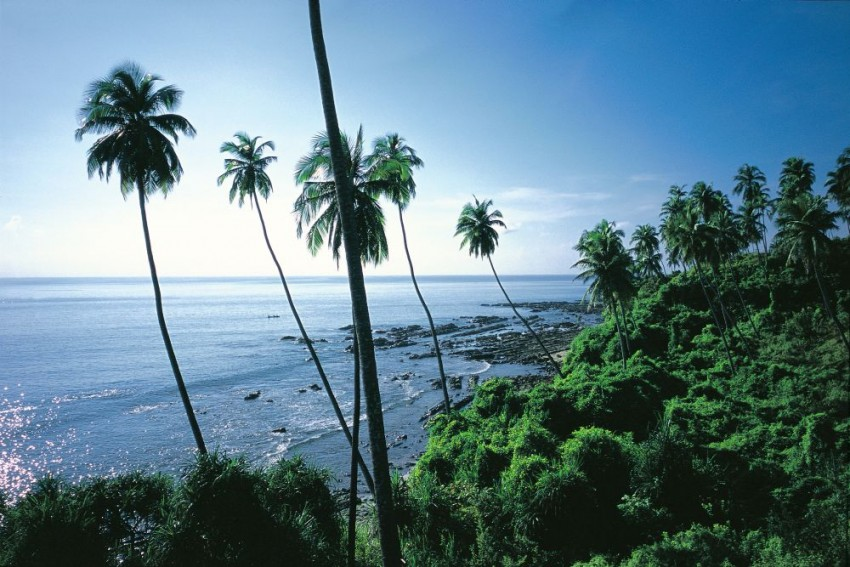 Shaheed Dweep, Swaraj Dweep, Netaji Subhas Chandra Bose: Govt To Rename 3 Andaman Islands