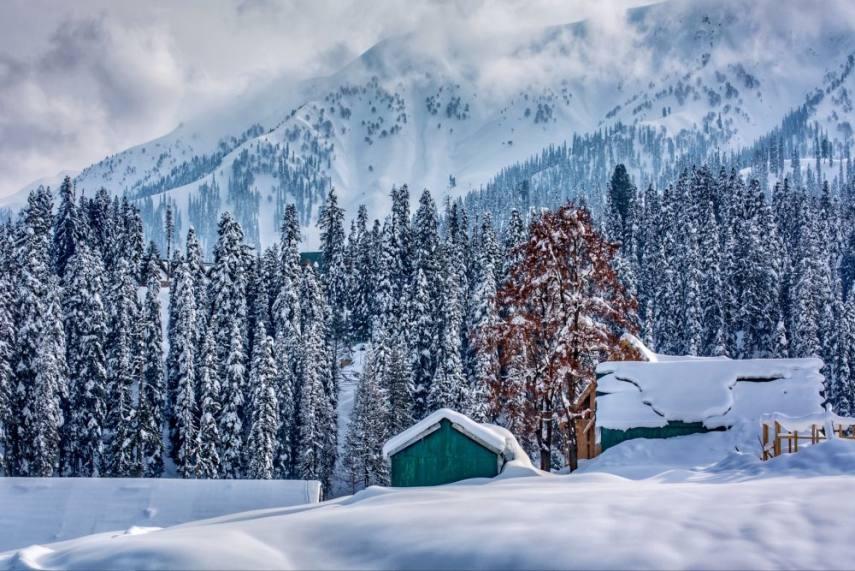 No Snowfall In Kashmir Till New Year; Srinagar Shivers At Minus 5.5 Degree  Celsius