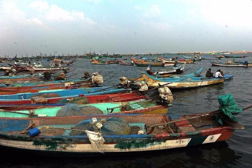 Tamil Nadu: Over 3,000 Fishermen Chased Away By Sri Lankan Navy Personnel