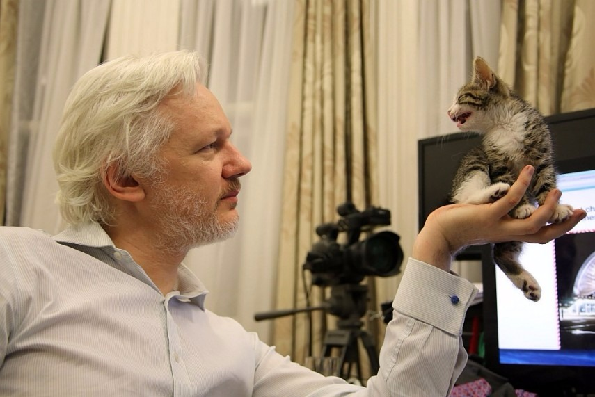 Ecuador Cuts Julian Assange's Internet Again After He 'Interferes In Other Country's Affairs'