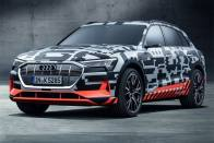 Audi Unveils e-tron Electric Prototype At Geneva Motor Show 2018
