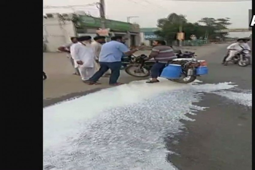 Farmers Launch 10-Day Protest, Block Milk, Vegetable Supply To Markets