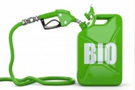 FAO Says Management Of Biofuels Matters: How To Reconcile Food & Fuel Production