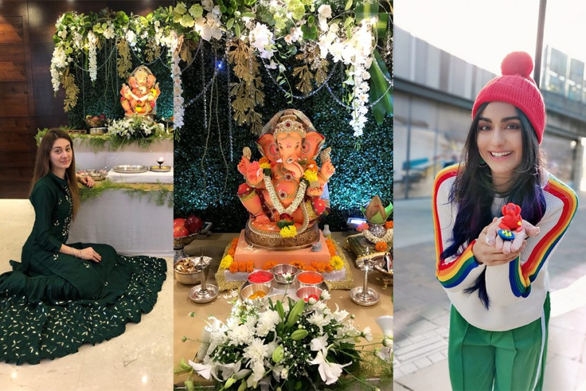 Stay Away From Chemicals, Make Ganapathy Bappa Happy