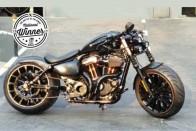 Custom Made Harley-Davidson Goliath To Represent India Globally