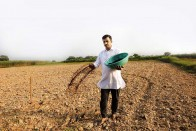 No Data To Justify, Is Zero Budget Natural Farming A Flawed Concept?