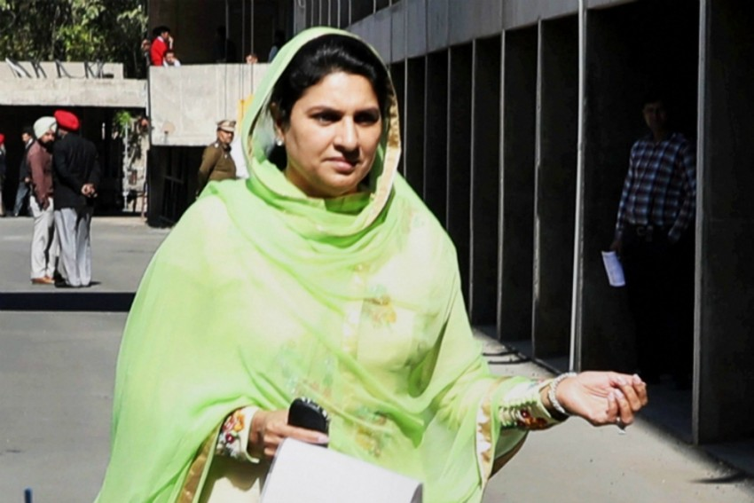 Efforts Will Be Made To Honour All Promises In Haryana: Dushyant Chautala's Mother
