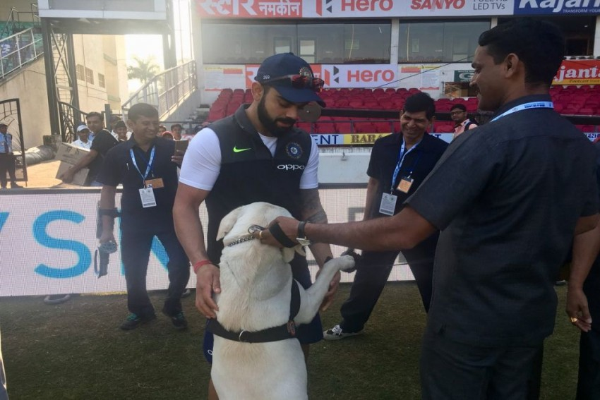 Virat Kohli: Another Well-Deserved Accolade For Indian Cricket Captain, This Time Off The Field
