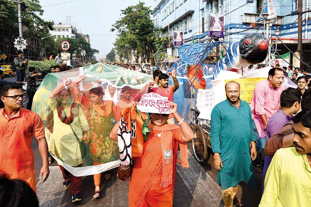 Preventive Measures Not Enough As Dengue Leaves Bengal Reeling