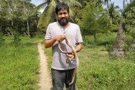 24 Hours In Life Of Shravan Krishnan: Kissing A Snake Is Risky Business, Play Safe, Says This Slytherin Wizard