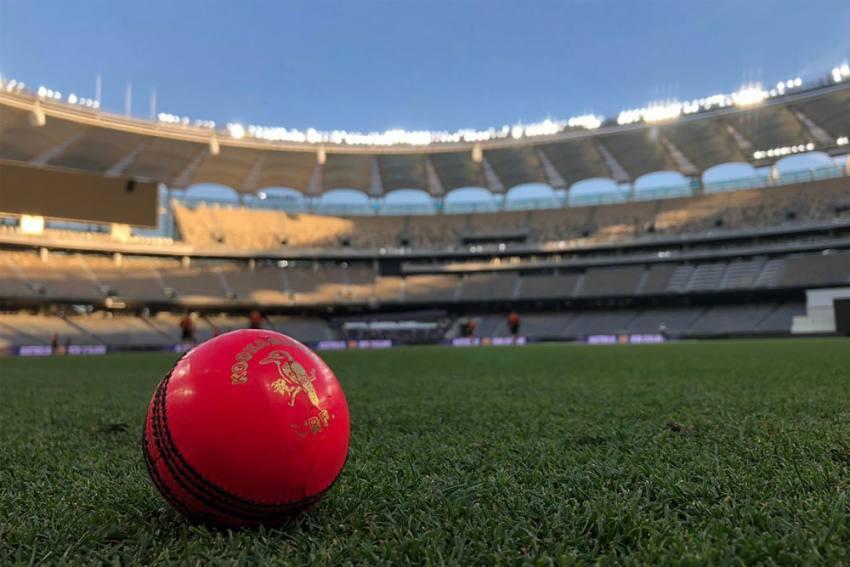 AUS Vs NZ, 1st Test: New Zealand Face Day-Night Challenge As Australia Series Begins