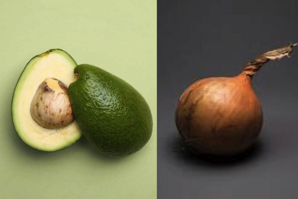 Avocados Or Onions?