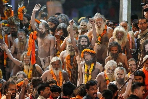 Weighing 30 Kilos, 'World's Largest Seed' From Over 120-Year-Old Tree Is Centre Of Attraction At Kumbh