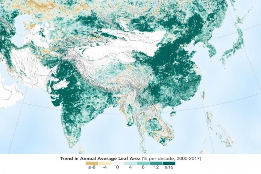 India, China Leading In Greening On Land Worldwide: NASA Study