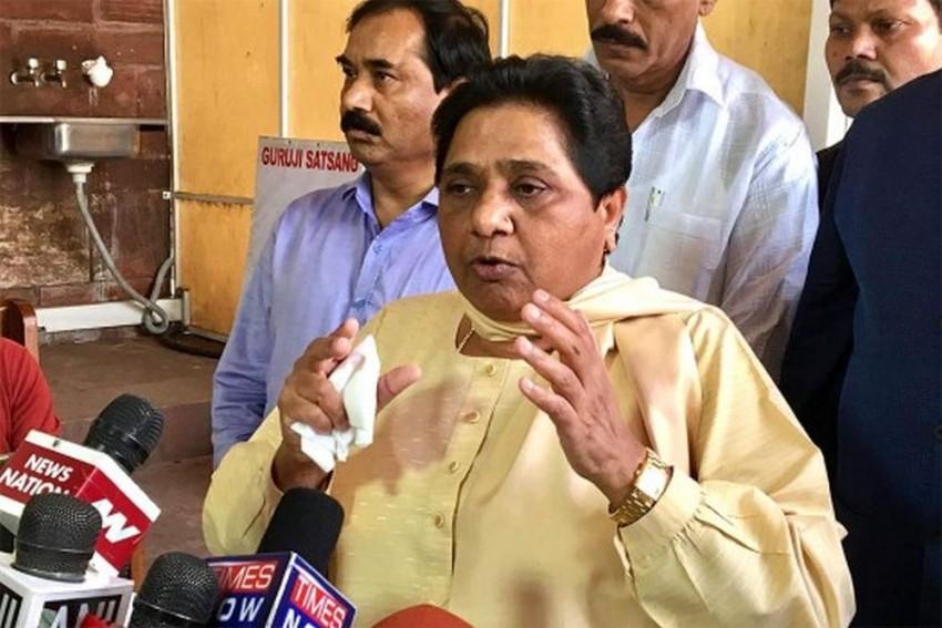 Supreme Court Asks Mayawati To Reimburse Money Spent On Erecting Her Statues, BSP's Symbol Elephant