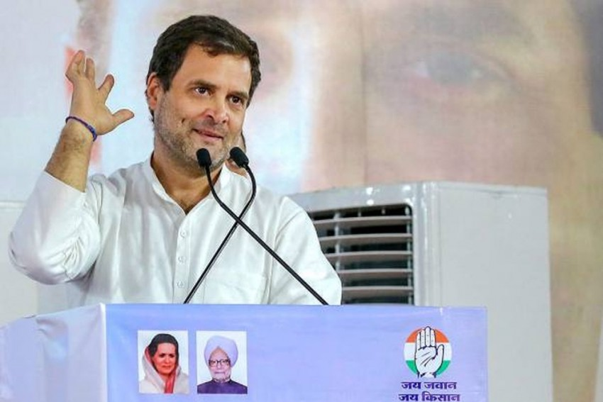 Rahul Gandhi To Contest From Kerala's Wayanad, 'Trijunction Of 3 Southern States'