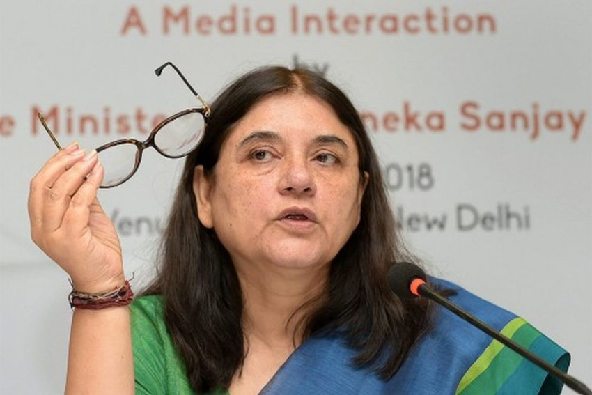 Passports Of 45 NRIs Cancelled For Abandoning Their Wives: Maneka Gandhi
