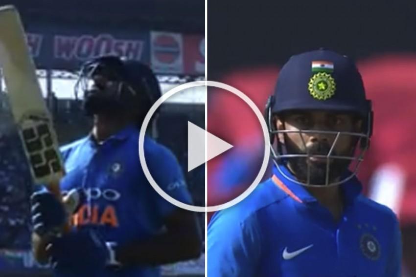 India Vs Australia, 2nd ODI: Vijay Shankar Gets Out In Most Unfortunate Manner – WATCH