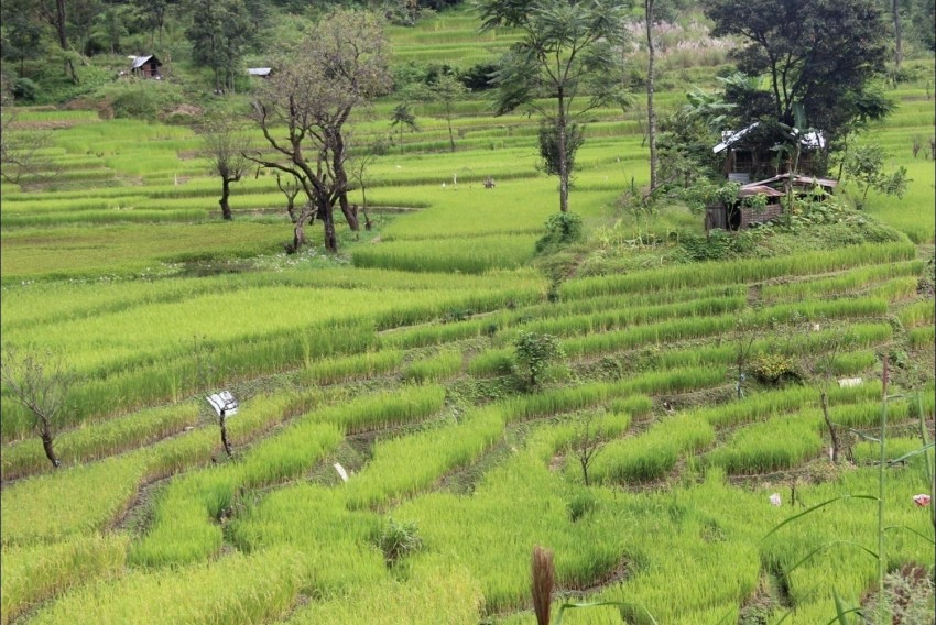 Towards Climate-Smart And Sustainable Agriculture in India