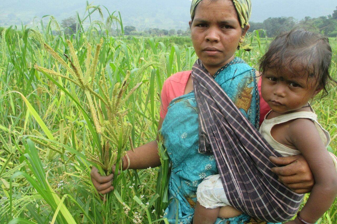 A Sustainable Nutrition Revolution Is What India Needs Today!