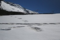 'Yeti Footprints' Discovered By Indian Army Evokes Mirth On Twitter, While Some Praise Team