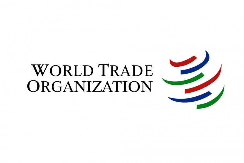 Collapse Of WTO's Dispute System, Imbalance In Reform Agenda Could Impact Developing Nations: India