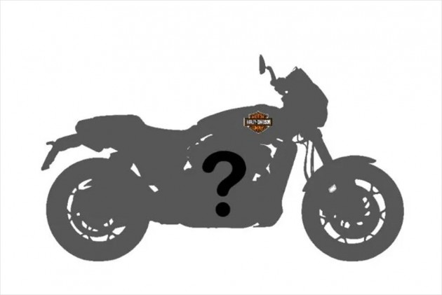 Harley-Davidson Small Capacity Bike: What To expect?