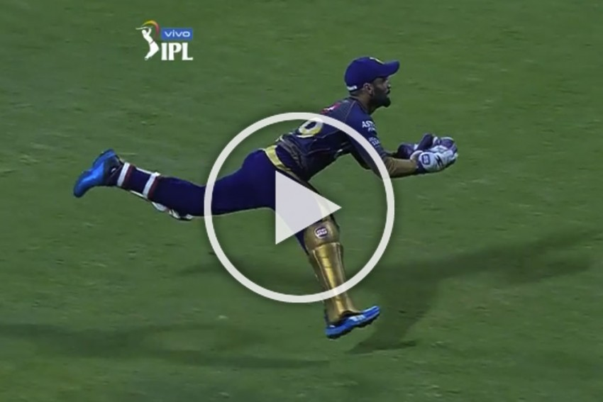 IPL 2019, MI Vs KKR: Seen A Better Effort? Dinesh Karthik Covers Half The Ground To Take A Magnificent Catch – WATCH