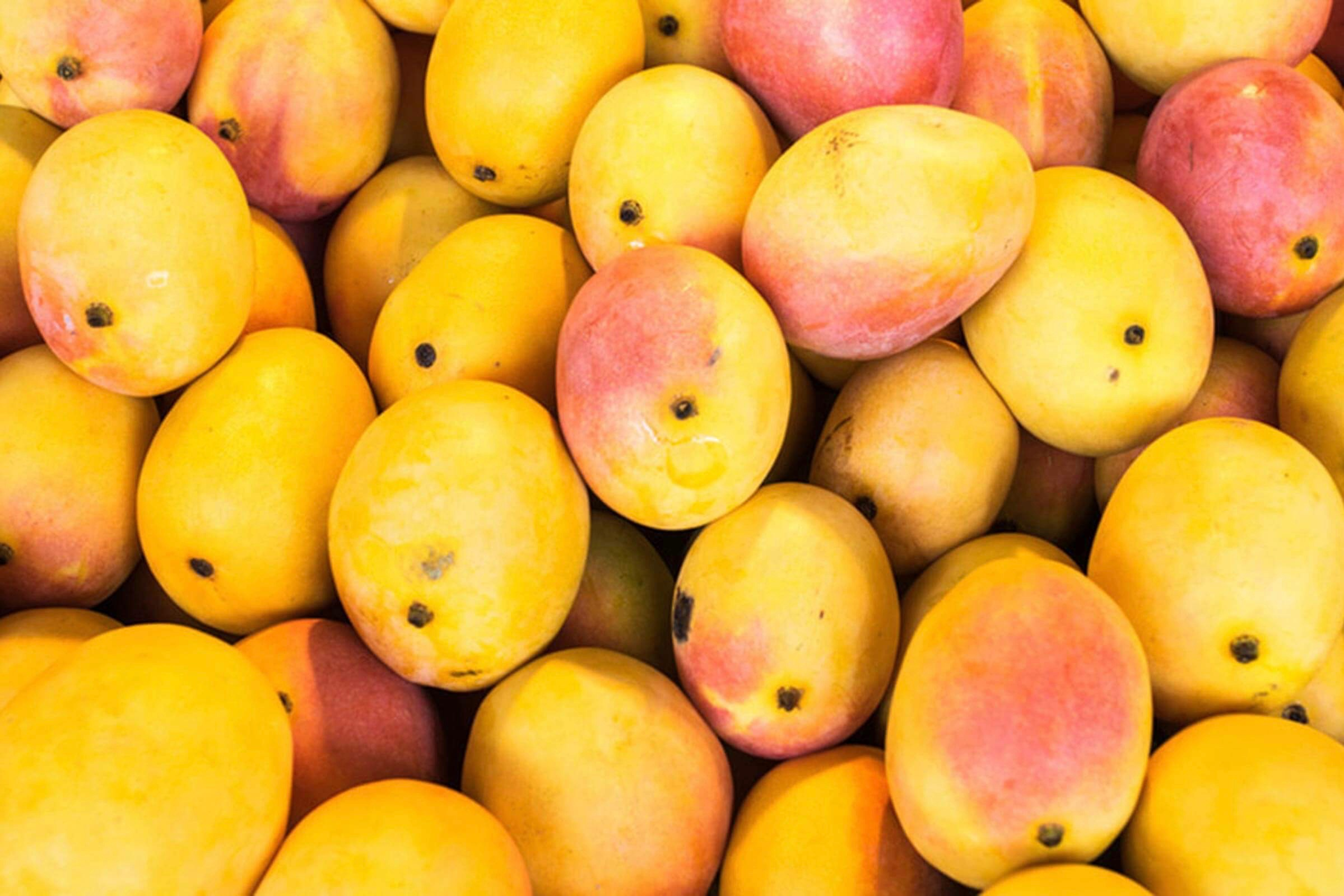 #Nutrition Tips For You: Relishing Mangoes In Summer - The Good And Bad Of It