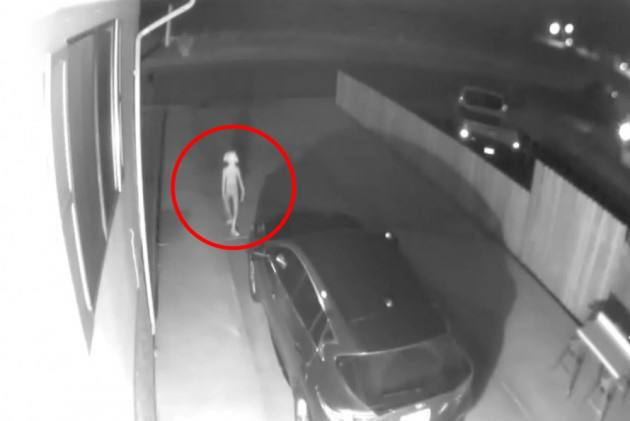 'Is It Dobby?' Internet Goes Crazy After An Elf-like Creature Spotted On CCTV