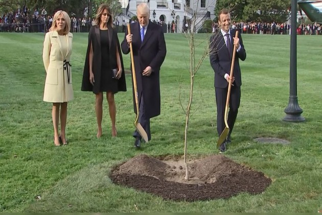 French Prez Emmanuel Macron To Offer New 'Friendship Tree' To Donald Trump As Old One Dies
